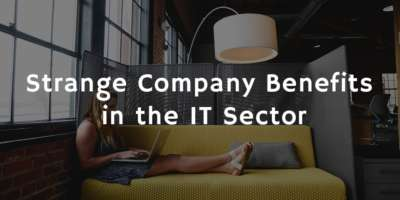 Strange company benefits in the IT sector
